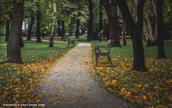 Foto Jasmin Zejnić