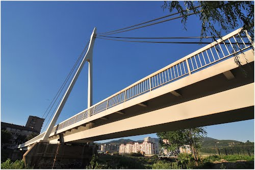 bilinopoljski most