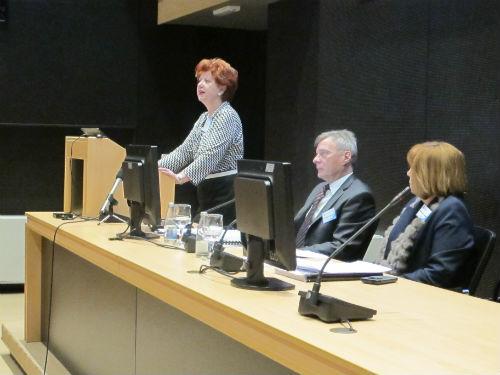 Novi Nadzorni odbor i dokapitalizacija RMU Zenica