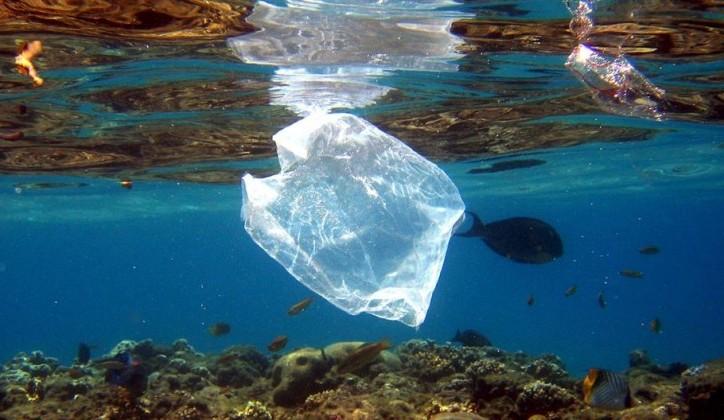 U vodama svijeta do 2050. biće više plastike nego riba