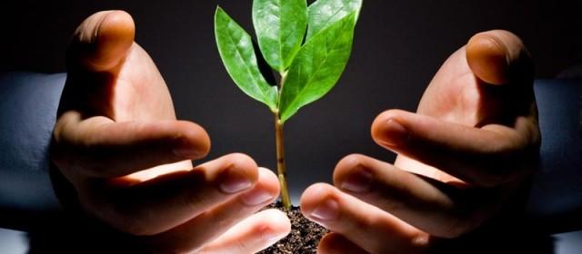 Promocija zaštite okoliša i energetske efikasnosti u Zeničko-dobojskom kantonu