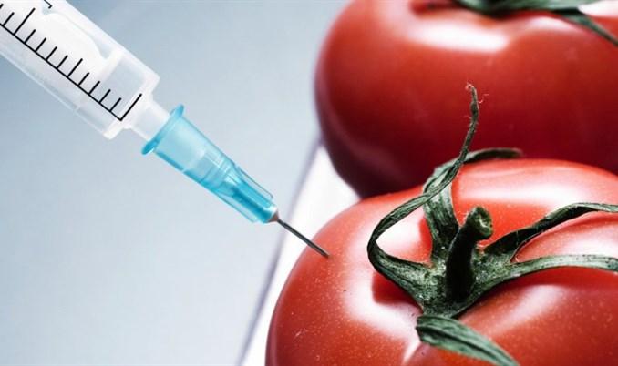 Većina bh. potrošača protiv upotrebe GMO u proizvodnji hrane