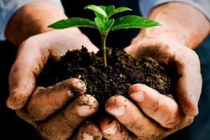 Na raspolaganju 19 miliona eura za zaštitu okoliša