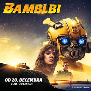 Bumblebee-300x300px-BiH.jpg