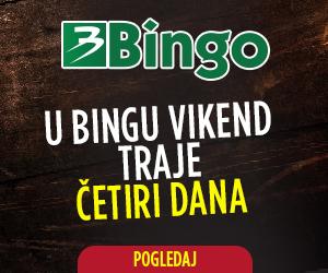 BINGO-banner-300x250-VA.jpg